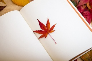 一冊の本.jpg